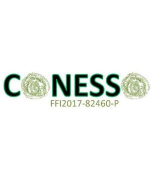 Logo_web_Proyecto_CONESSO